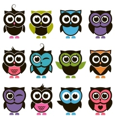 Funny colorful owl set vector