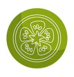 Sticker fresh slice lemon organ vegetable vector