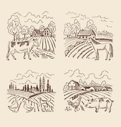 Village and big field landscape with vector