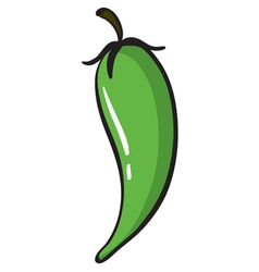 green chili vector image