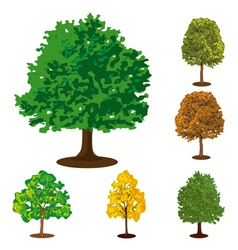 Collection of isolated trees vector