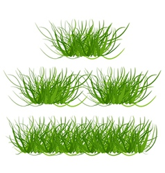 Collection grass vector image