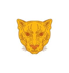Cougar mountain lion head mono line vector
