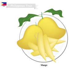 Fresh mango a famous fruit in philippines vector