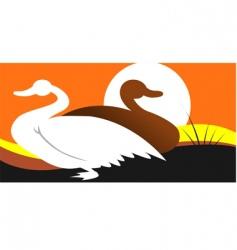 swan vector image vector image