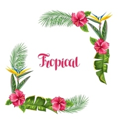 Frame with tropical leaves and flowers palms vector