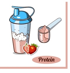 Scoop protein shaker strawberry vector