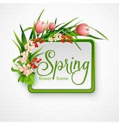 Spring frame with flowers vector image vector image