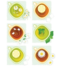 The set flower tea and lemon tea vector