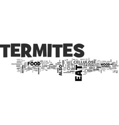 what do termites eat text word cloud concept vector image vector image
