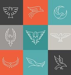Eagle and falcon linear logos vector
