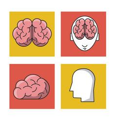human brain icons vector image