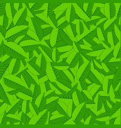 Mint leaves background vector image