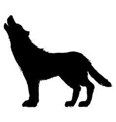 Silhouette of wolf vector