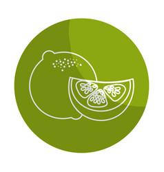 Sticker fresh lemon with slice organ fruit food vector