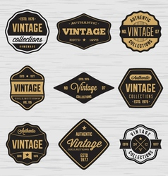 Vintage badge labels sticker vector