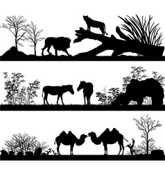 Wild animals lion horse pony zebra camel in differ vector