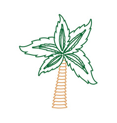 palm tree symbol neon lines vector image