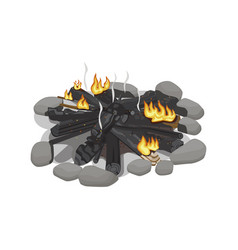 Dark burnt firewood with weak flame on white vector