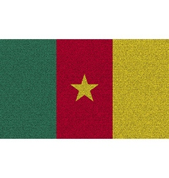 Flags cameroon on denim texture vector image vector image