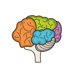Colo brain idea innovation vector