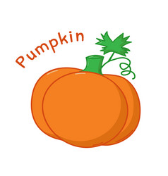 isolated pumpkin icon vector image vector image