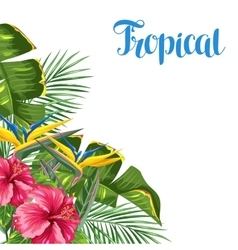 Invitation card with tropical leaves and flowers vector
