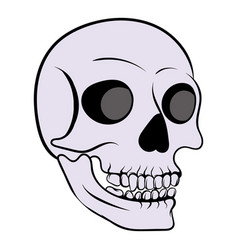 human skull icon icon cartoon vector image