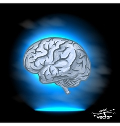Brain imagination vector