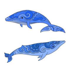 cartoon sea whale sketch doodle vector image
