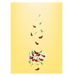 Corolla of roses and jasmines on yellow background vector