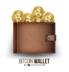 full bitcoin wallet brown color bitcoin vector image vector image