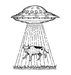 ufo kidnaps the cow engraving style vector image vector image
