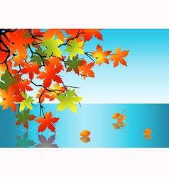 Autumn leaf reflection in water vector
