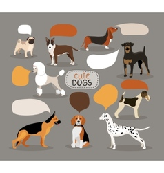 Set of dog breeds with speech bubbles vector image