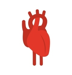 Human red heart symbol vector