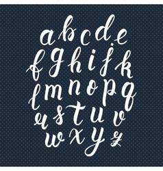 White hand drawn latin calligraphy brush script of vector image