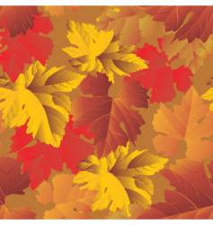grape foliage background vector image