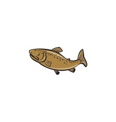Brown trout fish side cartoon vector