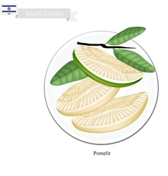 Fresh ripe pomelit a famous fruit in israel vector