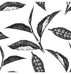 Hand drawn seamless pattern with tea leafs vector