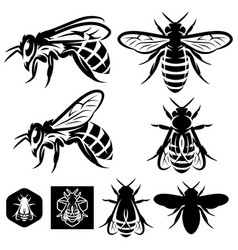 Set of monochrome templates with bees of vector