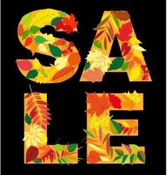 Autumn leaf inscription sale Isolated design vector image