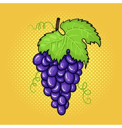 hand drawn pop art of bunch of grapes with a leaf vector image