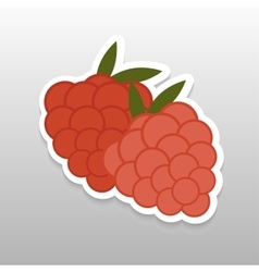 Flat sticker berry vector