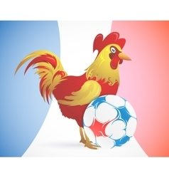 Rooster as symbol of France with soccer ball vector image