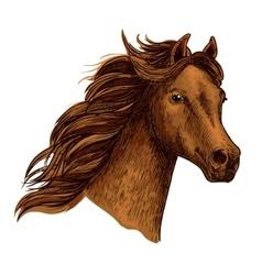 Arabian beautiful brown horse head vector image vector image