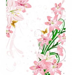bouquet lily vector image