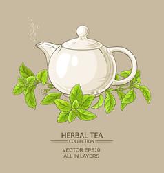 stevia tea vector image