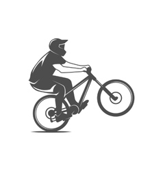 mountain bike badges logo and labels vector image